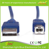 High Speed Printer Am to Bm Data Cable