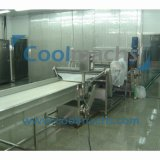 Spiral Freezer for IQF Frozen Food