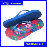 Hot PE Colorful Summer Slippers for Women (T16100)