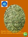 Organic Longjin Tea
