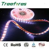 12V 24V 60LED 5050 Waterproof LED Strip Light