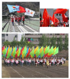 10FT telescopic large hand held flagpole with 192X128CM flag printing