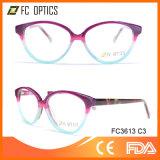 Hot Sale New Model Eye Wear Acetate Fashion Glasses