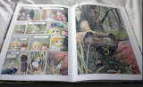 Colourful Comic Book Printing Service (jhy-222)
