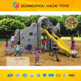 The Best Children Outdoor Climbing Wall for Sale (A-05202)