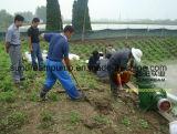 Hw Series Irrigation Axial Flow Pump
