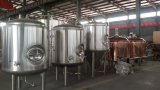 Attractive Option 2000L Bright Beer Brite Tank