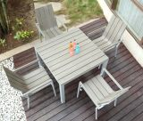 Polywood /Plastic Wood Outdoor Dining Sets (BZ-P004)