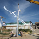 Small Wind Turbine for Public Squares, Gardens, Roads, Factories