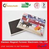 Customize Plastic/Polyresin/Soft Rubber/PVC Fridge Magnet as Souvenir