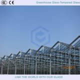 Greenhouse Glass and Showers Glass with Tempered Glass