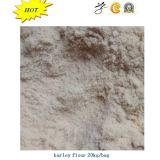 Barley Flour with Best Quality