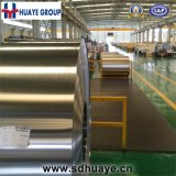 Well Polished Stainless Steel Strips