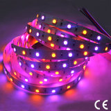 Waterproof SMD5050 RGBA LED Light Strip with CE