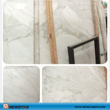 Polished Calacatta Marble White Slab