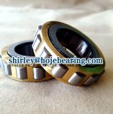 Separable Cylindrical Roller Bearing Nup211 Nup2211 Nup2311