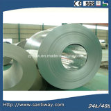 Stw Good Quality SGCC Galvanized Steel Coil Sheet