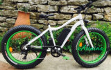 Fat Tire Dirt Snow Mountain Electric Bike with Pedal Assisted