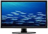 42 Inch Plasma TV (NBPLA20110711)