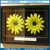 Tempered Glass Extra Anti Reflective Clear Glass for Photo Frame