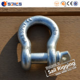 Galvanized Adjustable Screw Pin Us Type Forged Bow Shackle