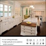 Classic European Style Kitchen Furniture (Fy072)