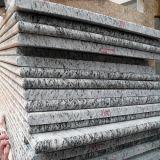 Spray White Granite Countertop Island Top