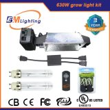 630W CMH Grow Light Kits with Dual 315W CMH Ballast Benefits for Hydroponic System