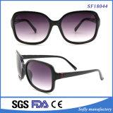 Fashion Women Summer Big Frame Casual Sunglasses