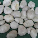 Factory White Polished Pebble Stone