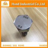 Stainless Steel ASME A193 B8 B8m M10X60 Hex Head Bolt