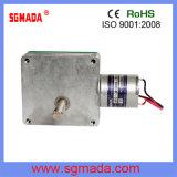 6V/ 12V DC Brush Motor with ISO9001