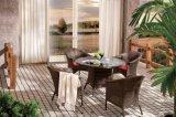 Rattan Chair Glass Tableoutdoor Patio Wicker Furniture Set Garden Canberra Dining Set (J642)