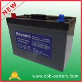 12V 100ah Deep Cycle Gel Battery for Recreational Vehicle