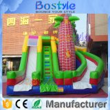 Colorful Inflatable Slide Climbing Inflatable Slides