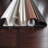 Different Shapes Extrusion PVC Plastic Profile