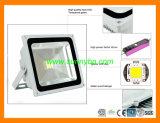 12V /24V 20W 50W 100W Solar Power Spot /Flood Light with CE