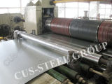 Hot Sale Cold Rolled Steel Coil/Hot Dipped Galvanized Steel Coil