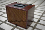 Wholesales Aer Style Acoustic Guitar Amplifier 60W (T-60N)