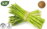 Manufacture 100% Natural Asparagus Extract