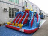 Vinyl Tarpaulin Lead Free Inflatable Water Slide for Kids