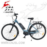 250W Central Brushless Motor 36V Lithium Battery E-Bicycle