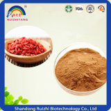 Goji Berries Extract Powder for Health Care