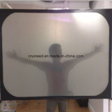 White Rear Projection Film Screens Suppor Back Projection