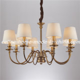 Decorative Iron Pendant Lighting Chandelier Lighting (SL2090-8)