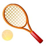 Cheap Prices! ! Professional Carbon Tennis Racket