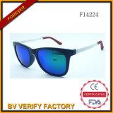 F14224 Hotselling Folding Sunglasses Free Samples