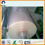 New Raw Material Transparent Pet Sheet Roll for Blister