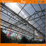 Polycarbonate Board Greenhouse with Glass Facade