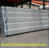 High Quality Stainless Seamless Steel Tube